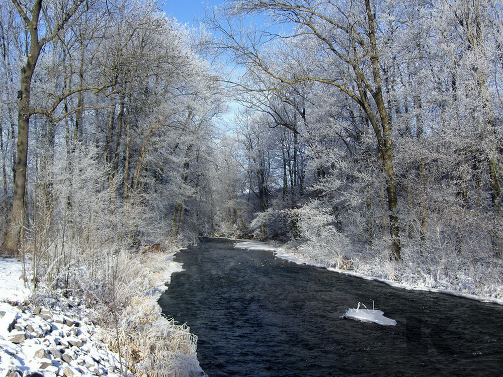 Fluss Gera im Winter